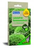 Naturid® Lockstoff Buchsbaumzünsler